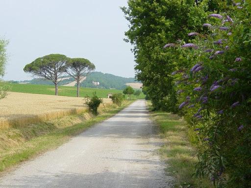 La voie verte Albi /Castres